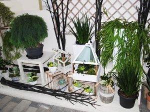 vivaio garden center